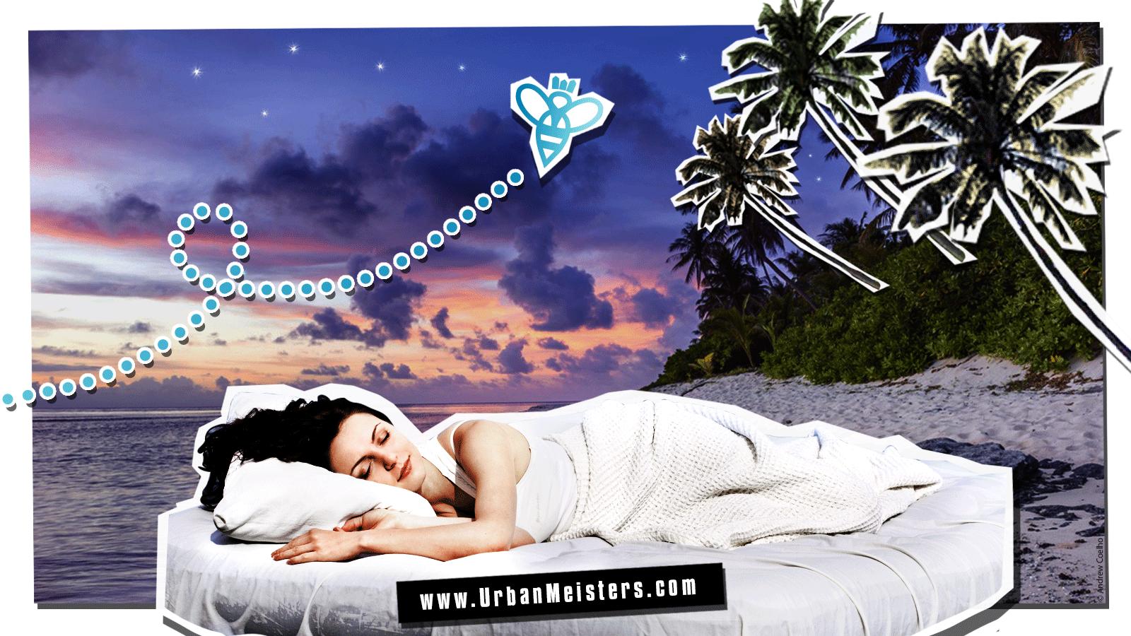 (Part 2/2) Why we urbanites sleep poorly? Could pollution…