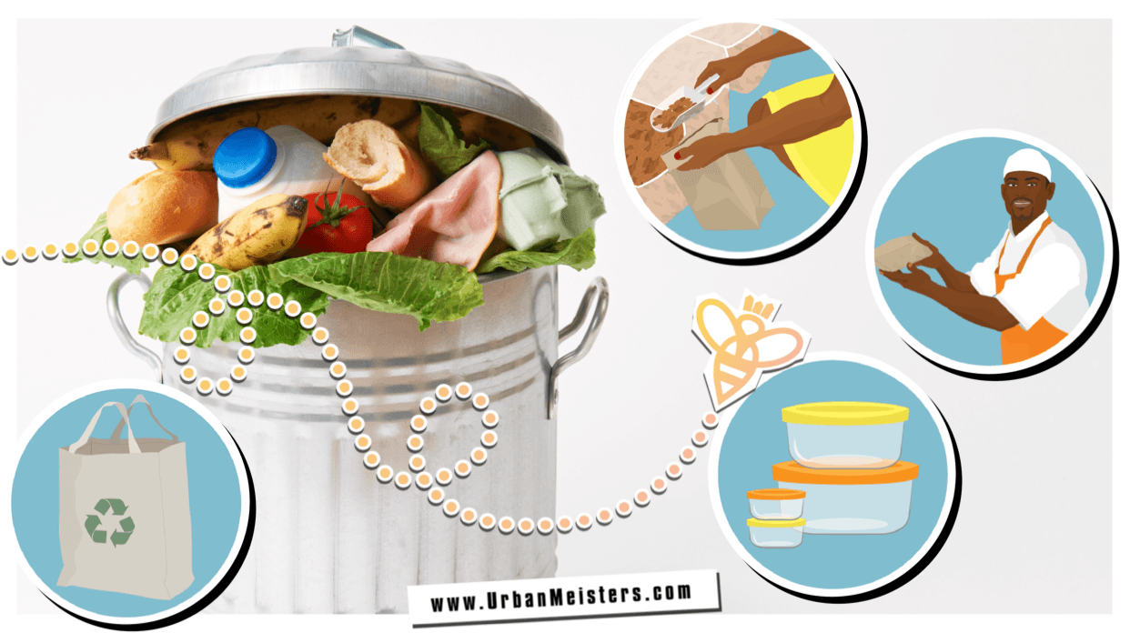 [GREEN EXPERT TIPS] Reduce food waste at home with easy tips!