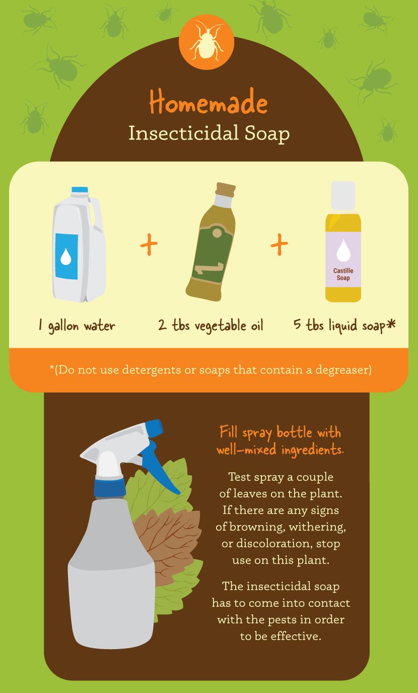Organic garden insecticidal soap