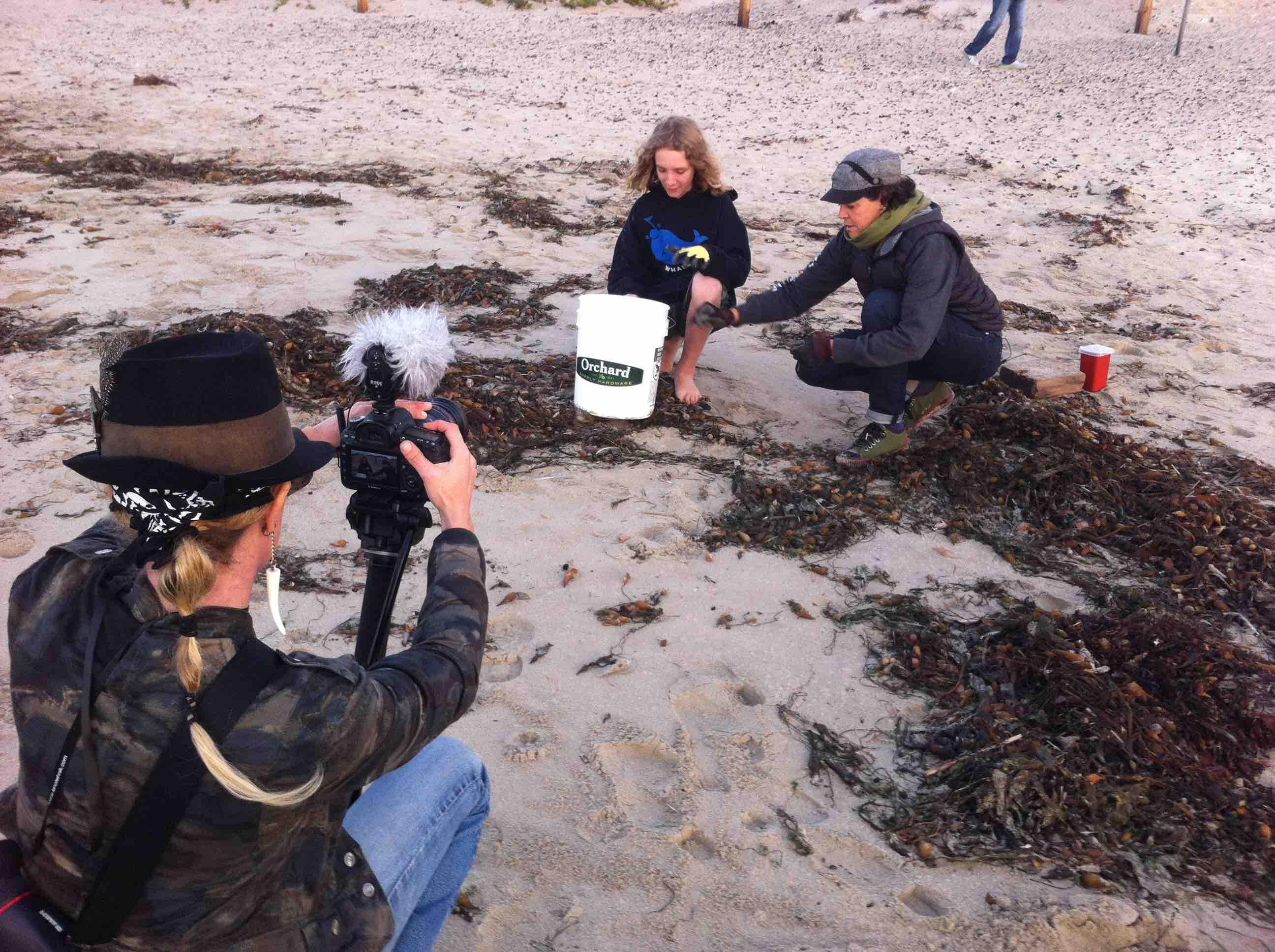 BeachCleanup_STRAWS FILM