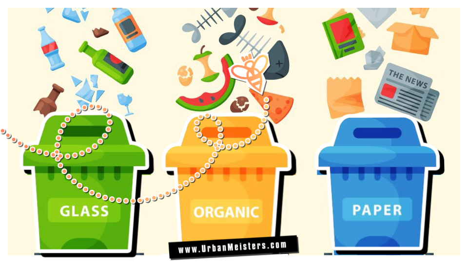 [GREEN QUIZ] What kind of a recycler are you? Recycling made fun!