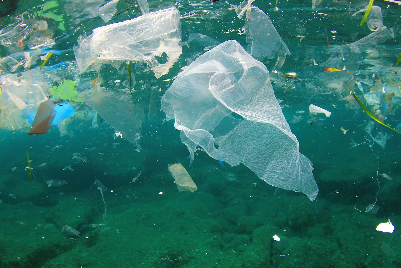 Sustainable Sailing- Plastic
