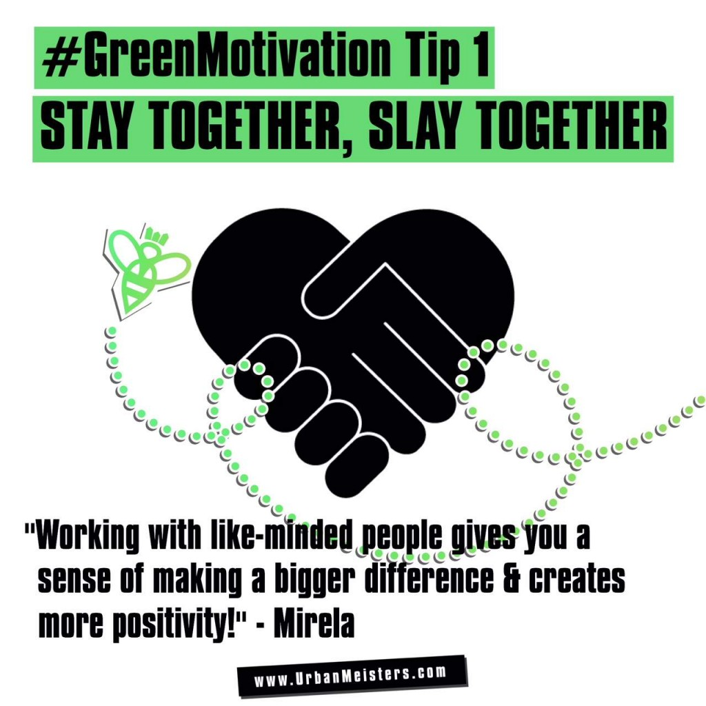 green lifestyle expert tip 1