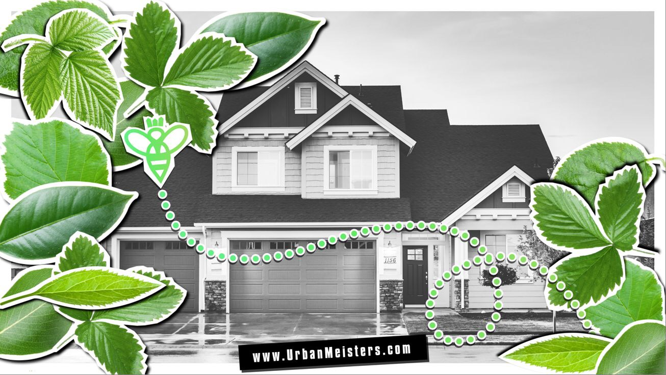 [GREEN HOMES] 6 great benefits that your one green home can have!