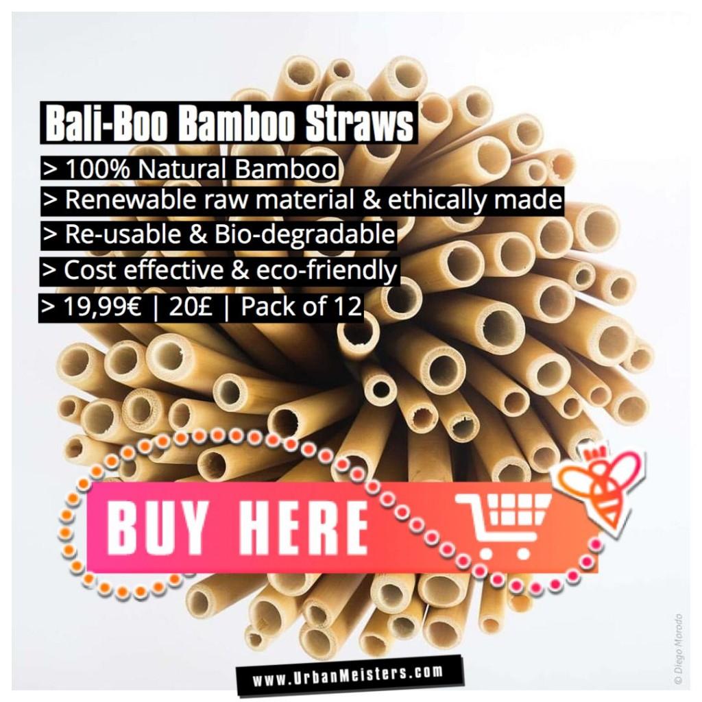 plastic straws vs bamboo straws