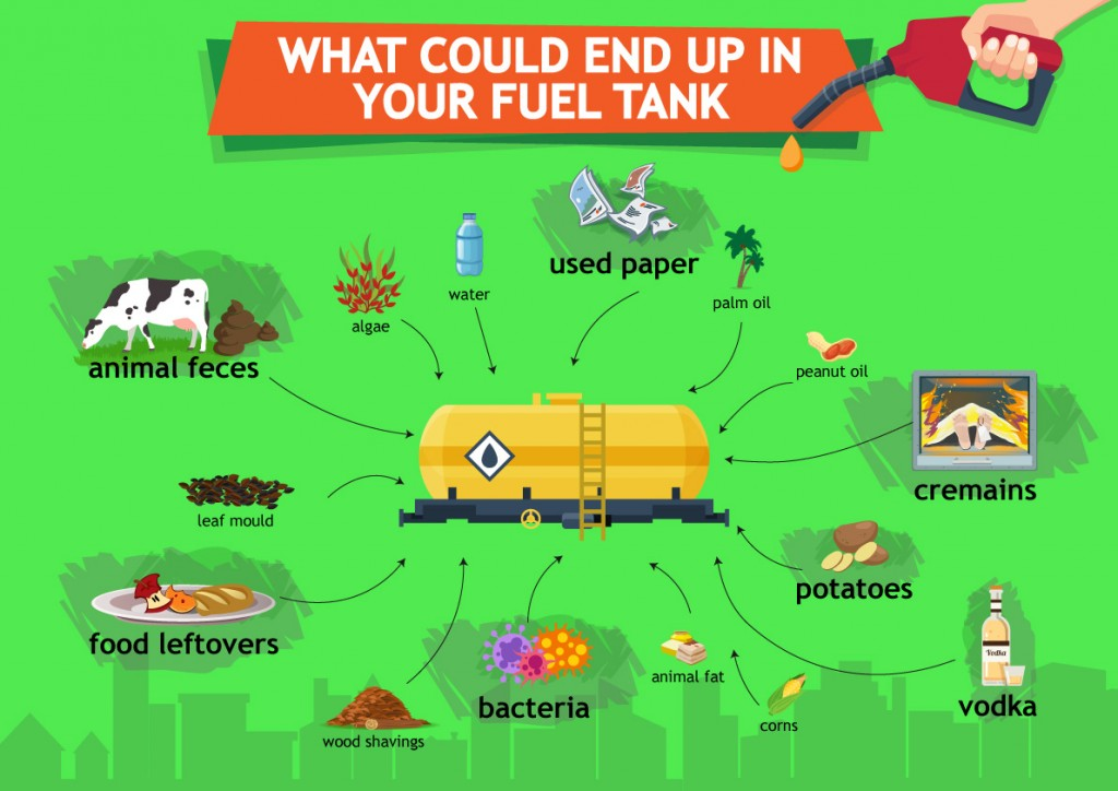 biofuels-infographic